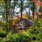 Hillsborough Barn by Monica M. Scanlan