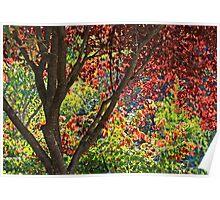 autumn window in Japanese Garden Poster