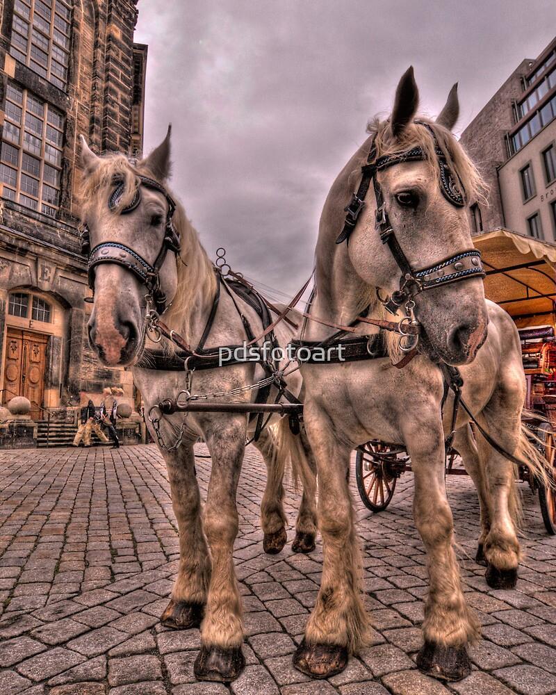 Old Town Dresden Germany by pdsfotoart