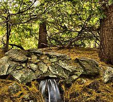 Little water fall by LudaNayvelt