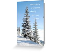 Fir Tree In Snow Greeting Card