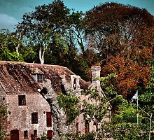 White Mill- Dorset by naturelover