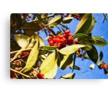 Red Berries and Leaves Canvas Print