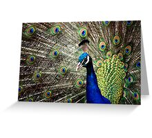 show-off much? Greeting Card