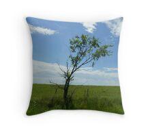 Tree at 60 MPH Throw Pillow