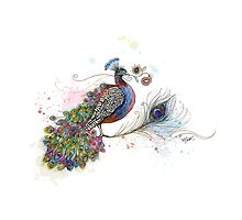 Royale Paisley Peacock by © Karin Taylor