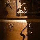 An Old Brown Door 2 by Michele Filoscia