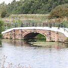 Local Walkway Bridge by crazyman53