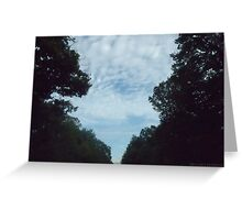 Sky through forest Greeting Card