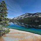 Tenaya Lake by Ted Lansing