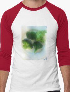 We Have a Little Garden Men's Baseball ¾ T-Shirt