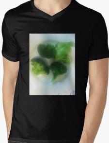 We Have a Little Garden Mens V-Neck T-Shirt