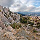 Mount Wellington  by smylie