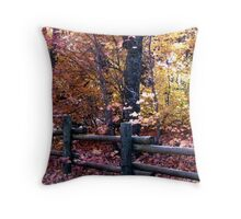 Fourth of July Canyon Throw Pillow