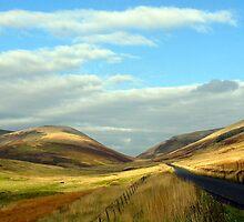 Road through the 'Granites'- near Peebles by rosie320d