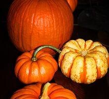 Pumpkin Season by Ticker
