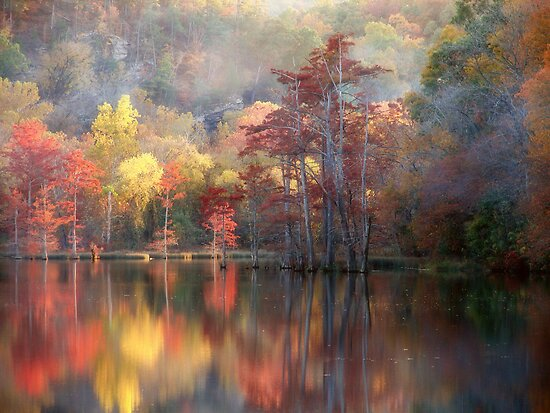 Spicy Fall Color by Carolyn  Fletcher