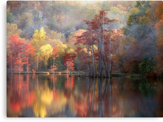 Spicy Fall Color by Carolyn  Fletcher
