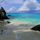 Trunk Bay - St. John by Marylee Pope