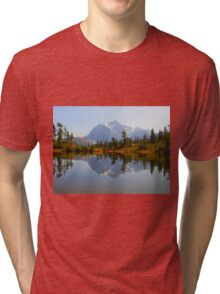Stop To Take It All In Tri-blend T-Shirt