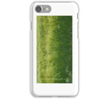 5)easterly iPhone Case/Skin