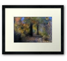 October Afternoon on the Trail Framed Print