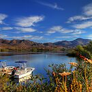 Lake Skinner Boating by Judylee