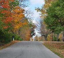 Country Road in October by mltrue
