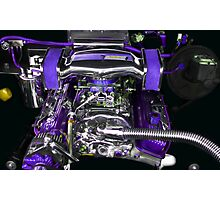 Holley Purp Photographic Print