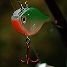 Jigging Lure by Paul Holman