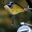 Jigging Lure 2 by Paul Holman