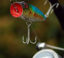 Surface Lure by Paul Holman
