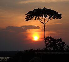 por do sol na amazonia by James Martins Pereira