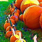 Pumpkins by Malania