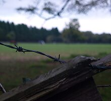 WireWorks by Avent101