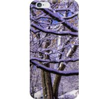 LIMBS COVERED IN SNOW iPhone Case/Skin