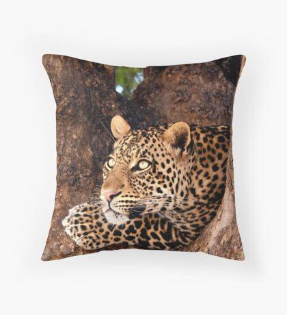 Leopard, Mashatu, Botswana Throw Pillow