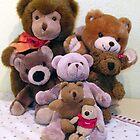 MR. TEDDY, FAMILY & FRIENDS by Heidi Mooney-Hill