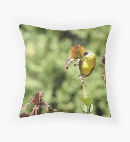 Want to Make Out? Throw Pillow
