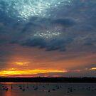 St Suliac Sunset by Ann Garrett
