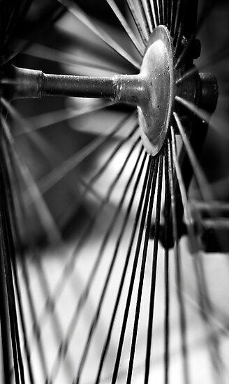Bike Spokes by Stephen Knowles