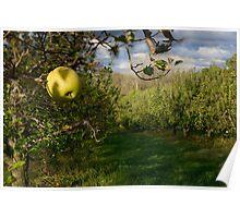 Last Apple Poster