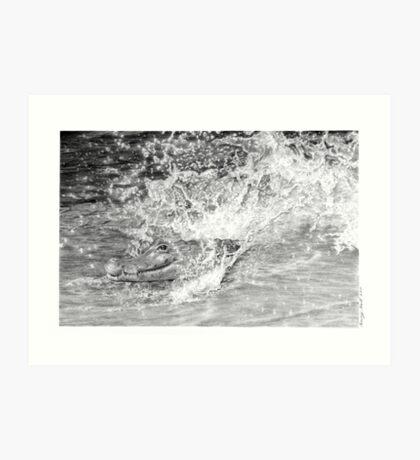 Gator Splash Art Print