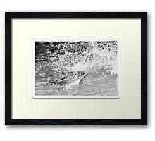 Gator Splash Framed Print