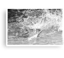 Gator Splash Canvas Print