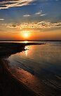 Shiny Shoreline by Carolyn  Fletcher