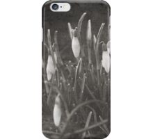 Snowdrops iPhone Case iPhone Case/Skin