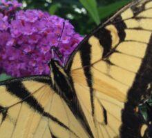Yellow butterfly on a Butterfly Bush Sticker