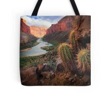 Marble Canyon Cactus Tote Bag