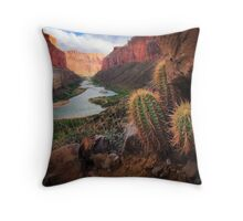 Marble Canyon Cactus Throw Pillow